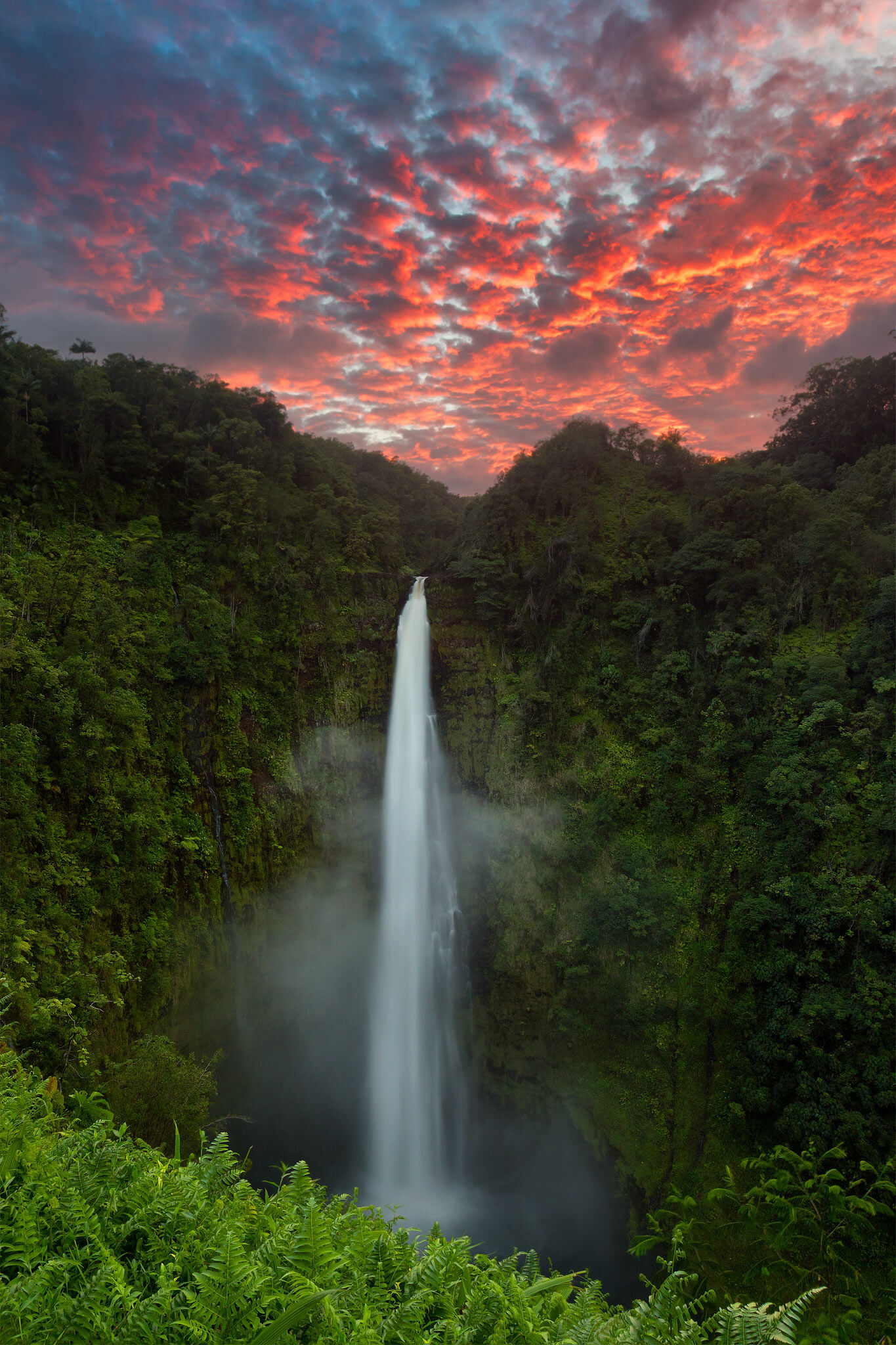 Akaka Falls is a waterfall that stands 422 feet tall, located on the east side of the Big Island. In this image, I captured the...
