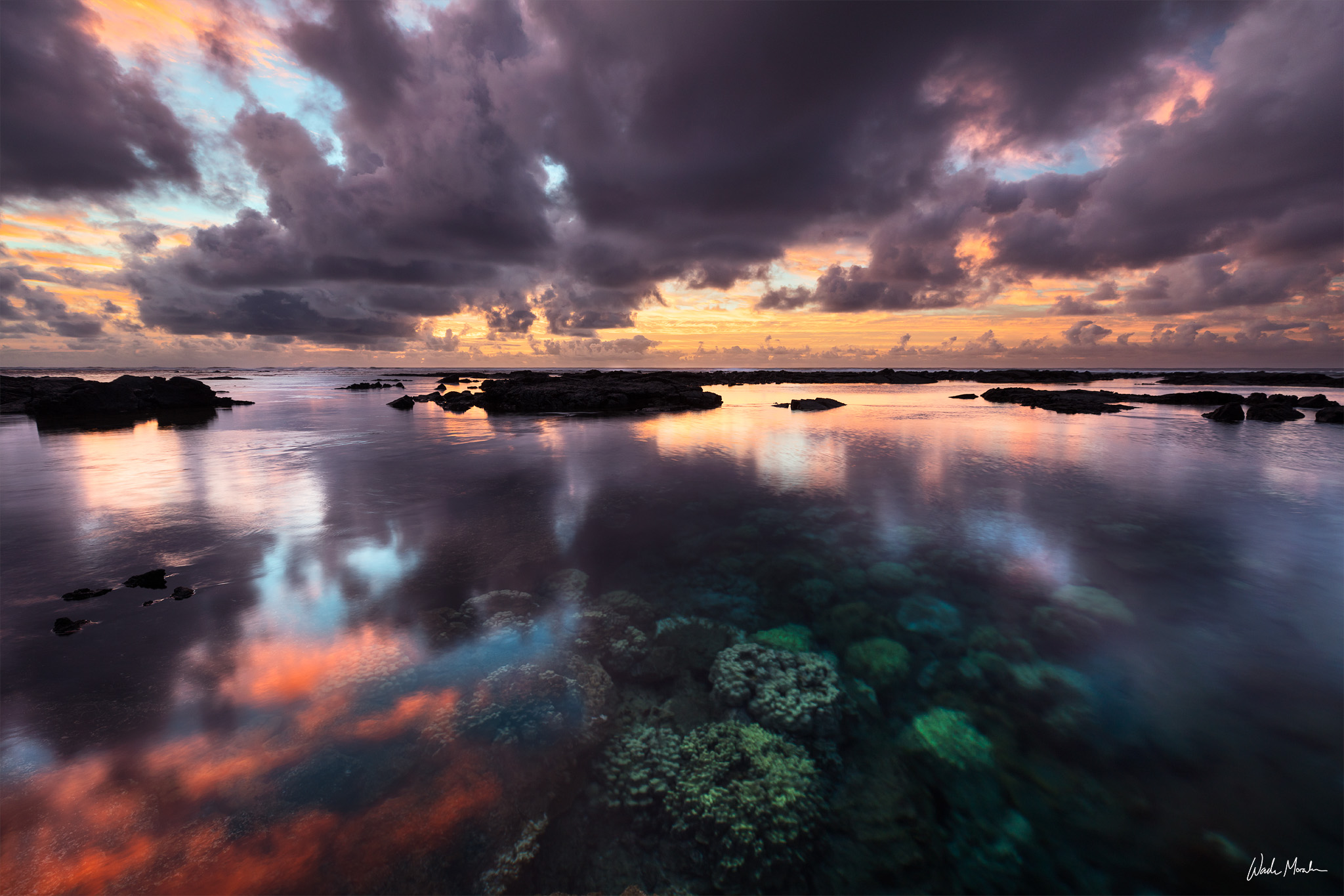 Kapoho Tide Pools was a little marine sanctuary located in the Puna District of the Big Island of Hawaii. It was known for its...