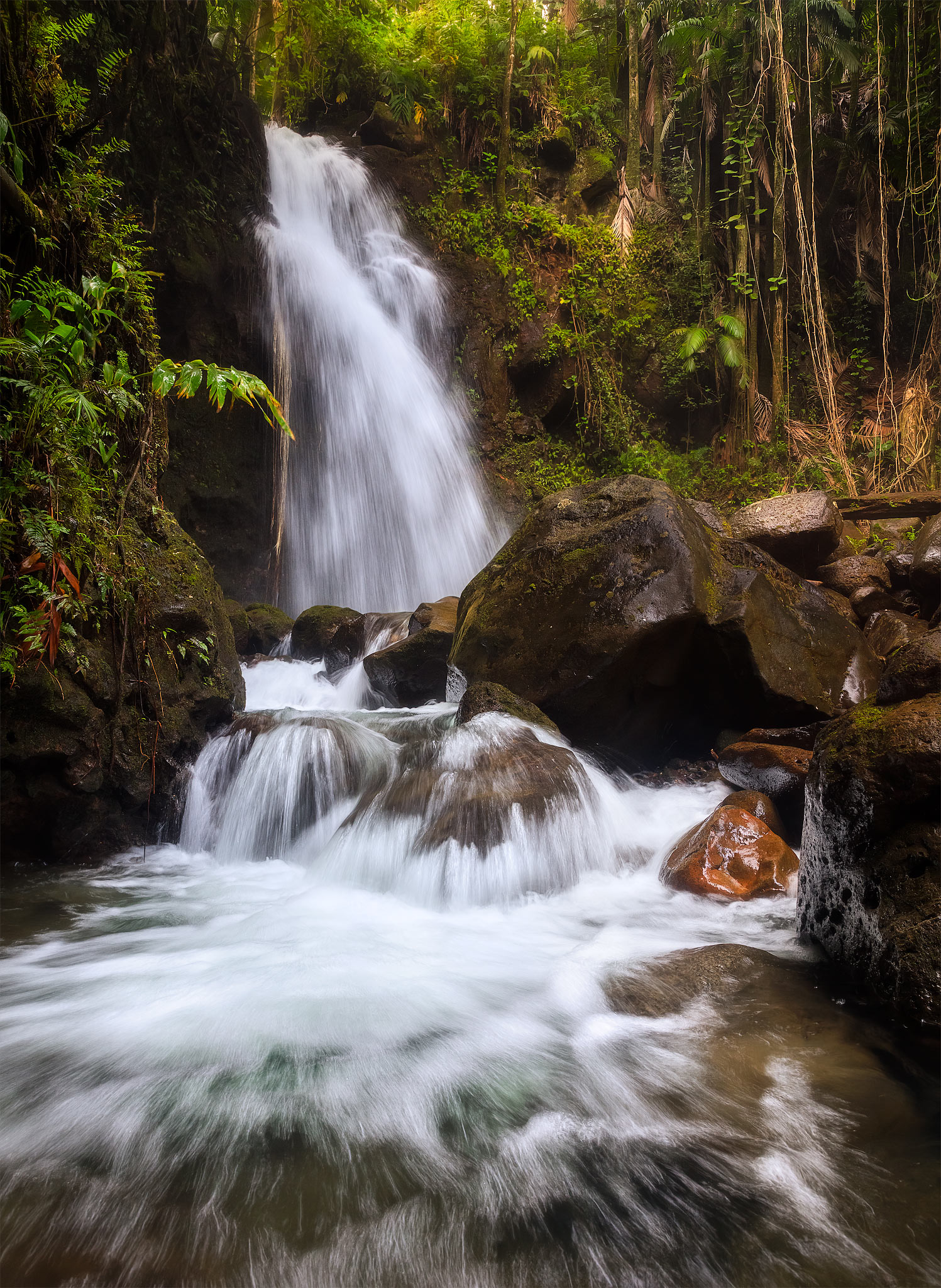 In this image, I captured a waterfall flowing through a forest on the Big Island of Hawaii. This is just one of the thousands...